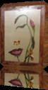 Vign_Maison_chats_2_023